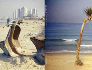 שוקה גלוטמן | חוף ירושלים