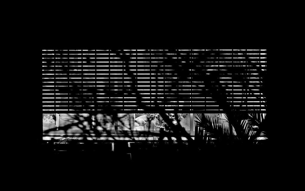 עופר_בסודו_01